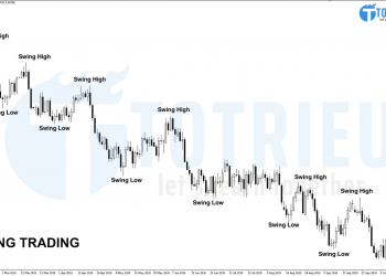 Swing Trading tại Swing High và Swing Low